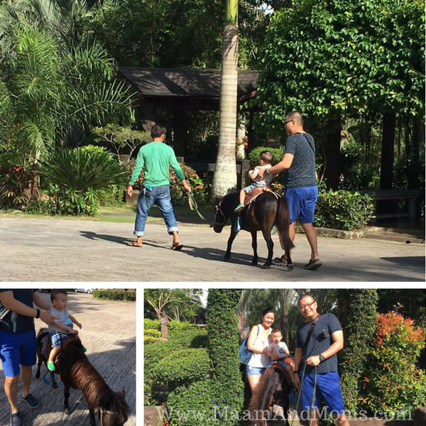 pony ride at cintai corito